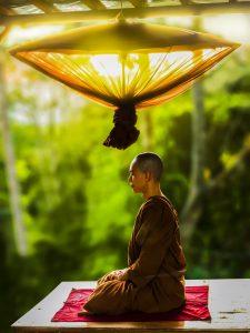 adult-asian-bald-buddhism-372281